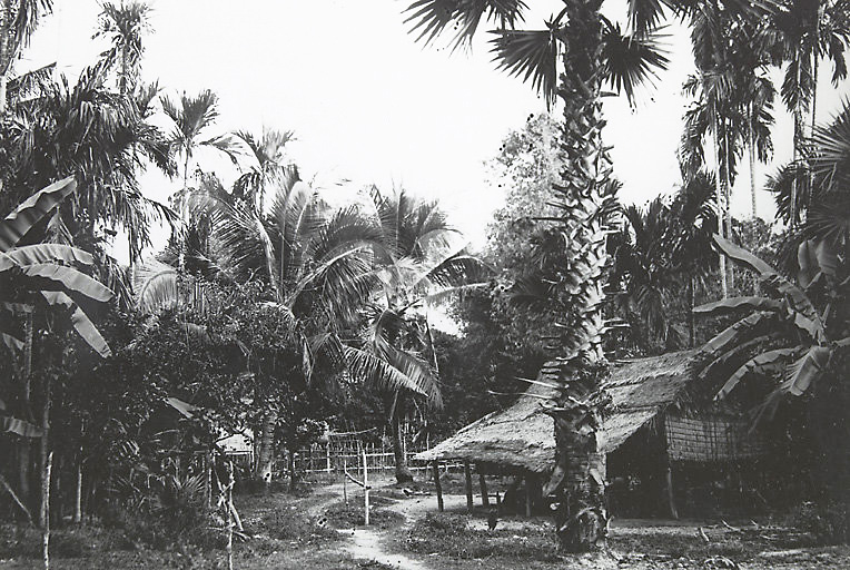 Old Cambodian house