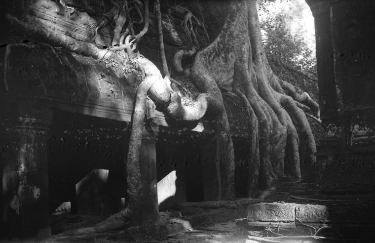 historic picture of Ta Prohm temple