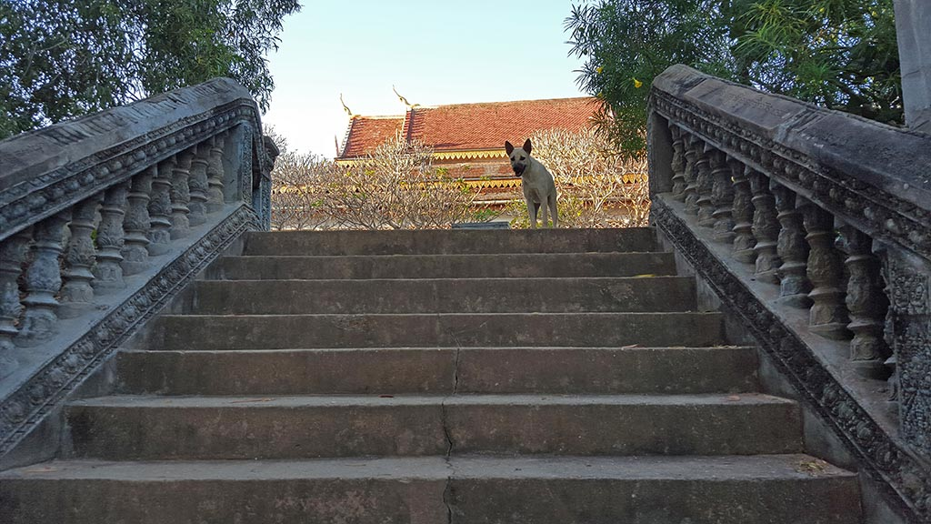 Stairs leading to Phnom Krom's hilltop