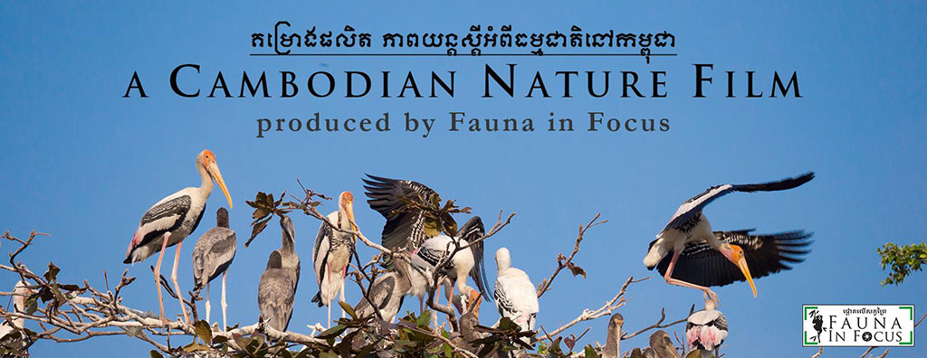 A Cambodian Nature Film screening